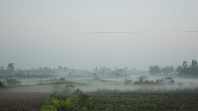 Krishnagiri Grass Mist
