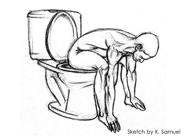 Western Toilets Posture 1